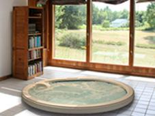 Гидромассажный бассейн спа Arena. Заглублённая установка в загородном доме с видом на лес.