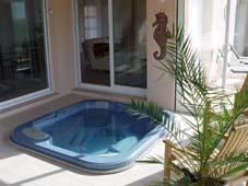 Гидромассажный бассейн спа Aurora II в зимнем саду.